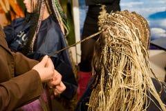 coiffure женщина Стоковая Фотография