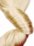 Coiffure scuro dei capelli biondi immagini stock