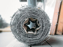 Coil of barbed wire Stock Images