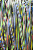 Coil of electric cable Stock Photo