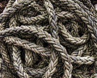 Coil of rope Stock Photography