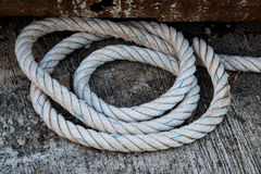 Coil rope on the floor Stock Photos