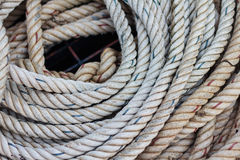 Coil of the rope Stock Images