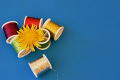 Coil of thread and dandelion Royalty Free Stock Photos