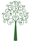 Coil Tree Stock Photo