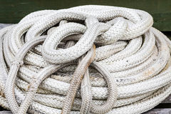 Coil of White Braided Rope Stock Photo