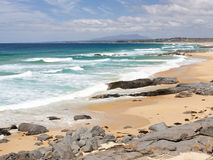 coila пляжа Стоковые Изображения RF