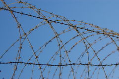 Coiled barb wire fence Royalty Free Stock Photos