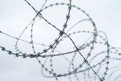 Coiled Barbed Wire royalty free stock image