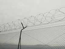 Coiled barbed wire stock image