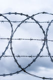 Coiled razor and barbed wire fence Royalty Free Stock Photography