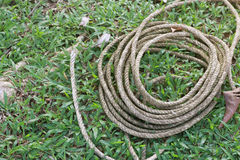 Coiled roll of rope arranged on grass ground Stock Photo