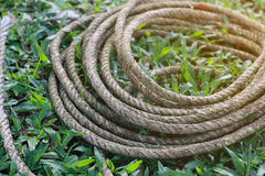 Coiled roll of rope arranged on grass ground Royalty Free Stock Photography