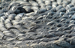 Coiled rope. Close up of heavy coiled rope Royalty Free Stock Photos