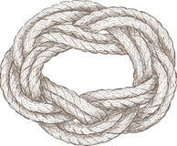 Coiled rope. Vector drawing of a twisted rope of a sailboat rigging Royalty Free Stock Photo
