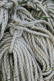 Coiled rope. Royalty Free Stock Photo