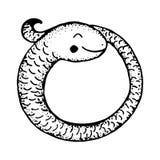 Coiled vector snake cartoon Stock Photos