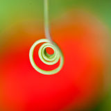 Coiling Through Colours Royalty Free Stock Images