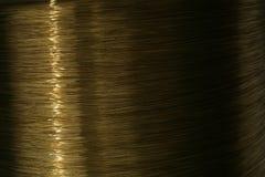 coilkoppartråd Royaltyfri Fotografi