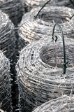 Coils of barbed wire. Closeup royalty free stock photo