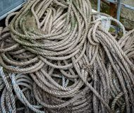 Coils of old marine rope with fungai royalty free stock photography