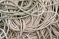 Coils of hemp rope on a beach Royalty Free Stock Photography