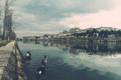 Coimbra City Royalty Free Stock Photography