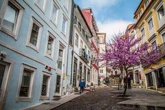 Coimbra stad Arkivfoto
