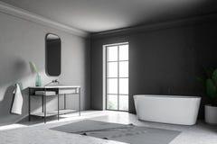 Coin, baquet et évier gris de salle de bains de grenier illustration libre de droits