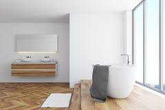 Coin blanc de salle de bains, baquet et double évier illustration stock