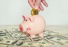 Coin box and bitcoin. Selective focus royalty free stock photo