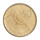 Coin 50 centavos Royalty Free Stock Image