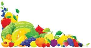 Coin coloré de fruit illustration de vecteur