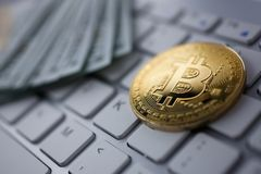 Coin crypto currency bitcoin lies on the keyboard. Background theme gold exchange pyramid for money due to rise or fall exchange rate closeup royalty free stock photos
