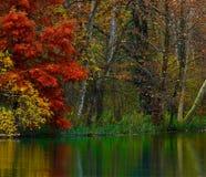 Coin de fleuve en automne Photographie stock libre de droits