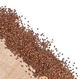 Coin de grains de café images libres de droits