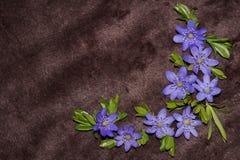 Coin floral de modèle - fleurs d'hépatique Images stock