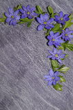 Coin floral de modèle - fleurs d'hépatique Photographie stock libre de droits