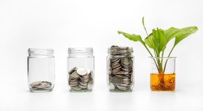 Coin in a glass with energy saving Stock Photos