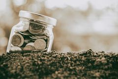 Coin in the glass jar growing from soil against blurred natural Stock Photos