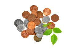 Coin and green leaf Royalty Free Stock Photos