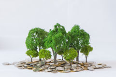 Coin growing tree. Suggesting that the economic recovery stock photography