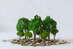 Coin growing tree Royalty Free Stock Images