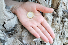 Coin in hand Royalty Free Stock Photo