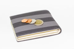 Coin on Money Pocket or Wallet. It's on white background Royalty Free Stock Photo