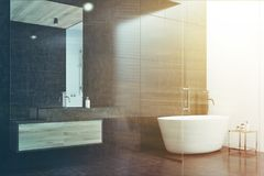 Coin noir et blanc de salle de bains modifié la tonalité Images libres de droits