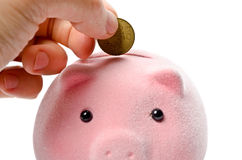 Coin and piggy bank Royalty Free Stock Images