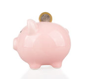 Coin and piggy bank. One euro coin and piggy bank isolated on white Royalty Free Stock Photos