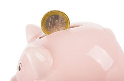 Coin and piggy bank. One euro coin and piggy bank isolated on white Stock Photography