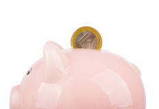 Coin and piggy bank. One euro coin and piggy bank isolated on white Royalty Free Stock Images